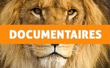 Documentaires